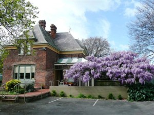 City Park Cottage  & Wisteria